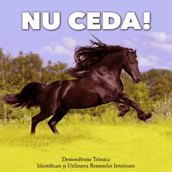 Nu Ceda - sedinta demonstrativa terapia resurselor
